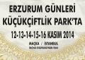 Türkiye'nin 81 şehri KüçükÇiftlik Park'a taşınacak