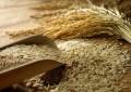 Pirinçte KDV % 1'e inecek