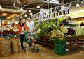 Migros'un online alışveriş markası Tazedirekt geri dönüyor
