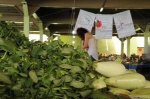 ekolojik pazar1
