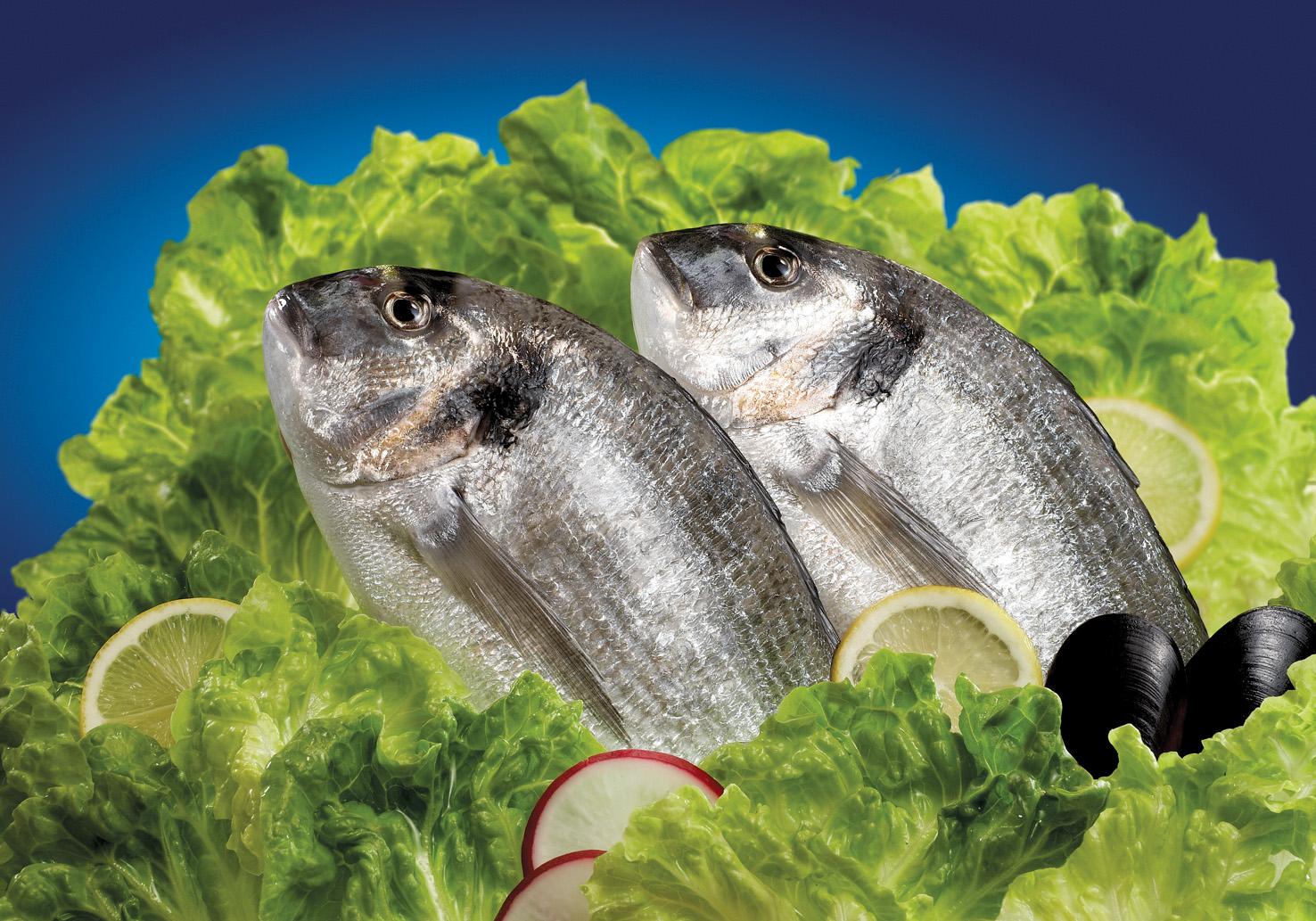 Hayvansal ürünlerin ihracatına Bodrum'dan 500 milyon dolarlık katkı