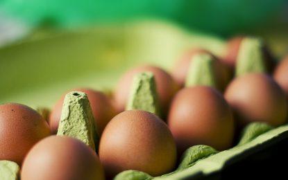 Güvenle yumurta tüketilebilir