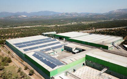 Fora Zeytin'den çevreci yatırım