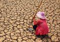 Gıda Sürdürülebilirliğinde Fransa lider, BAE sonuncu oldu