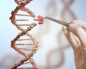 """2 kuşak Nobel ödüllü Prof. Dr. Vilhelm A. Bohr: """"Etkin DNA tamiri ile sağlıklı yaşlanmak mümkün!"""""""