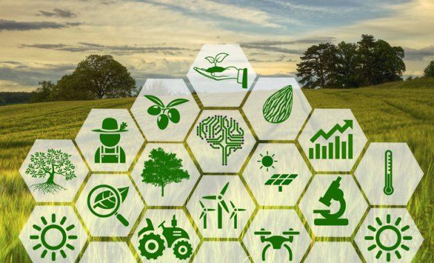 Geleceği 4. Tarım Devrimi kurtaracak