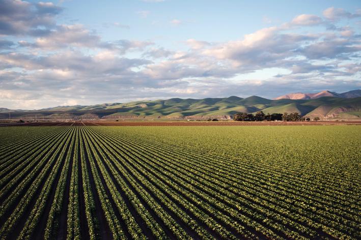 Tarım ilacı kullanımı % 29 arttı