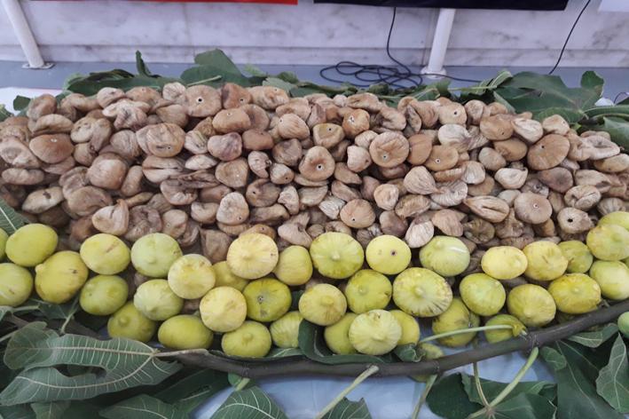 Çin'e kuru meyve ihracatında yüzde 183'lük rekor artış