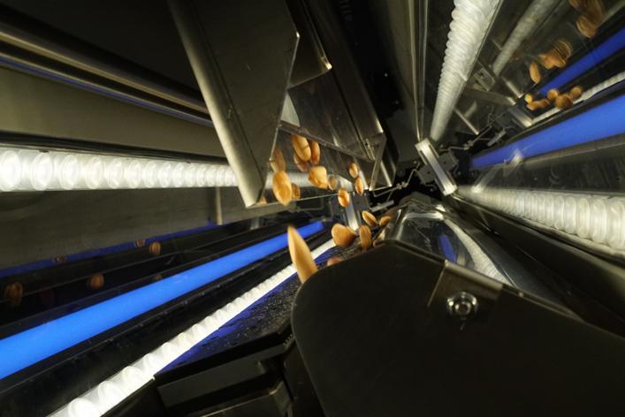 Optik ayıklama makinesi Tomra 3C'den yenilikçi çözümler