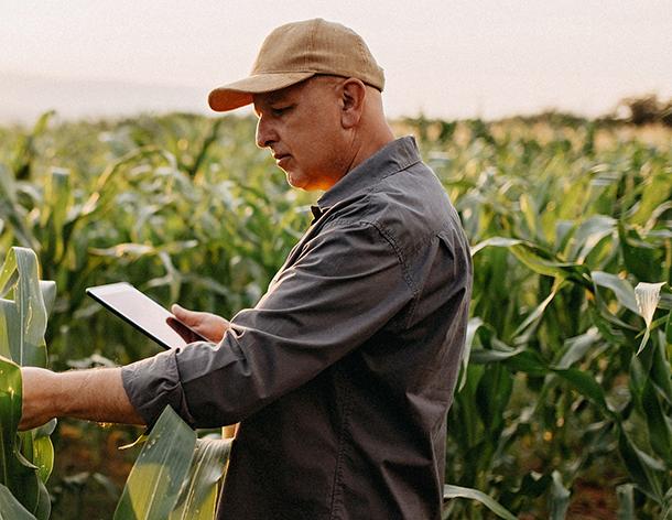 """Barilla: """"Gıda sektörünün geleceği için cesur adımlar atılmalı"""""""