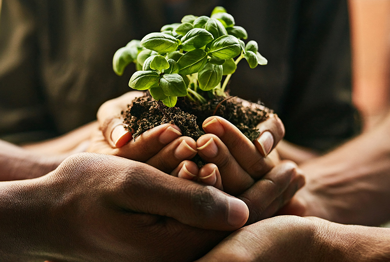 BCFN-Food Tank işbirliği ile gıda sistemi yeniden yapılandırılacak