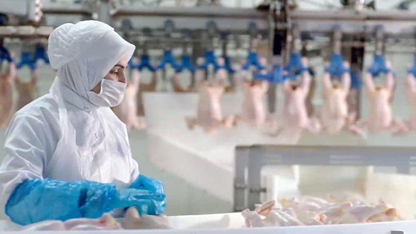 Beyaz et sektöründe kadın istihdam oranı yüksek